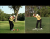 Shaping Golf Shots around Trees